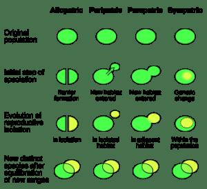 Speciation modes