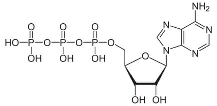 Hydrogen peroxide (h2o2) molecule, chemical structure. Hooh is an.