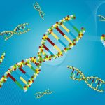 Gene Pool - Definition and Examples | Biology Dictionary