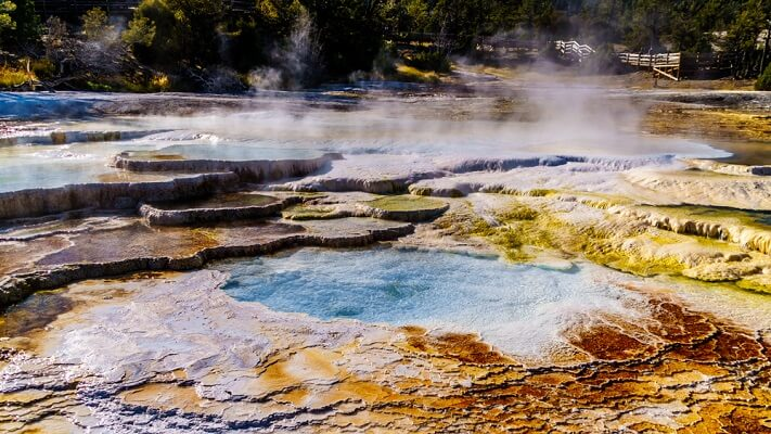 Many Archaea and some bacteria have evolved to live in very extreme environments - such as places with high temperature and salinity.