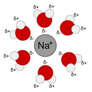 Na+H2O