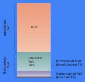 Cellular Fluid Content
