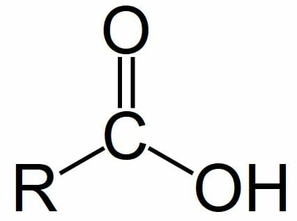 hydroxyl group definition and quiz biology dictionary