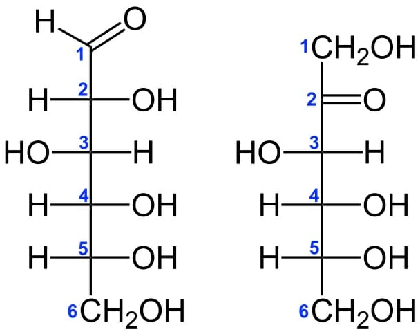 Isomer Definition Types Example And Quiz Biology Dictionary