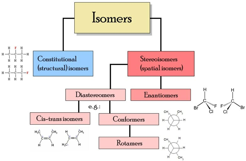 Isomer definition types example and quiz biology dictionary types of isomers ccuart Images