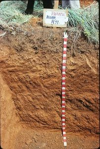 Soil Science