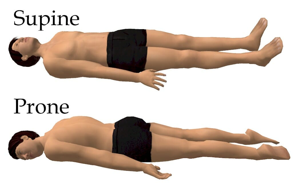Supine Position Explanation And Uses Biology Dictionary