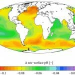 How Climate Change Affects the Biodiversity of Marine Ecosystems