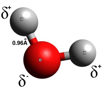 Ball and stick model of a water molecule