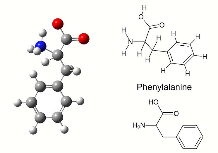 Phenylalanine structure