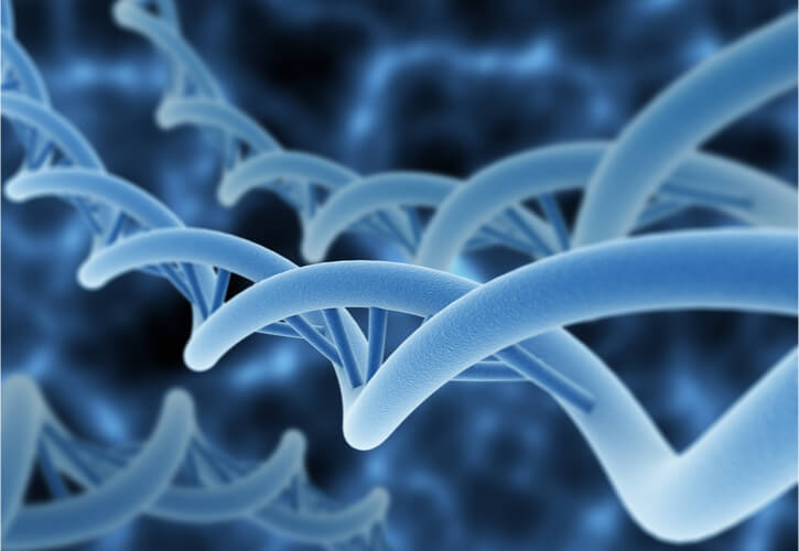 Close-up of DNA double helix