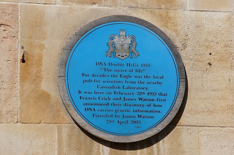 A plaque to commemorate the discovery of the DNA double helix outside of a pub in Cambridge