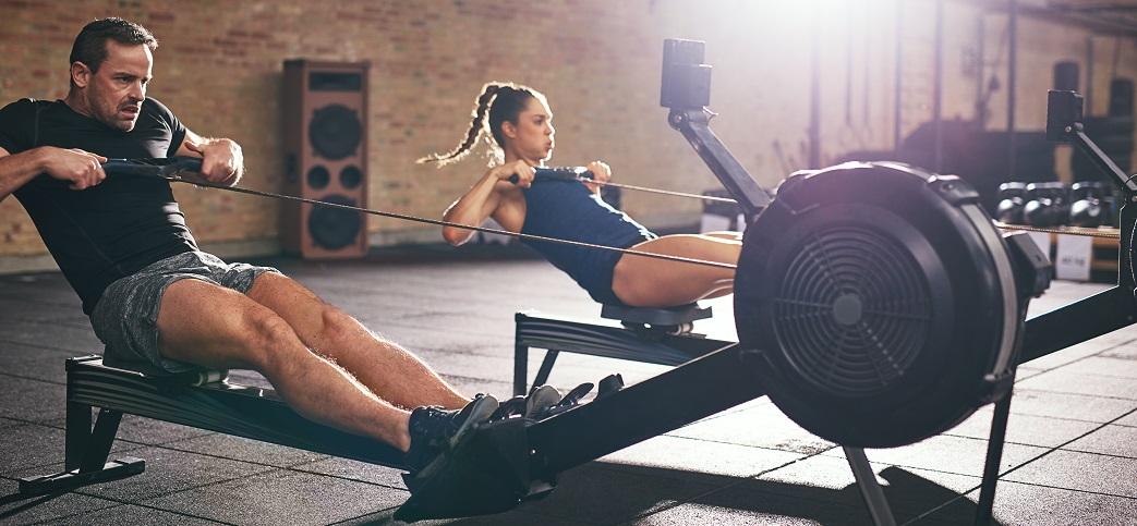 rowing transverse extension shoulders elbows
