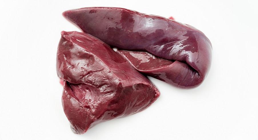 liver glucose metabolism gluconeogenesis