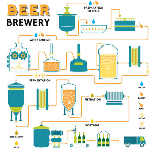 Step-wise process of beer brewing as shown by cartoons