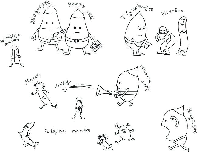 immunity cartoon