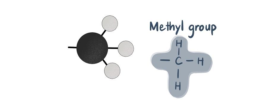 methyl group molecule