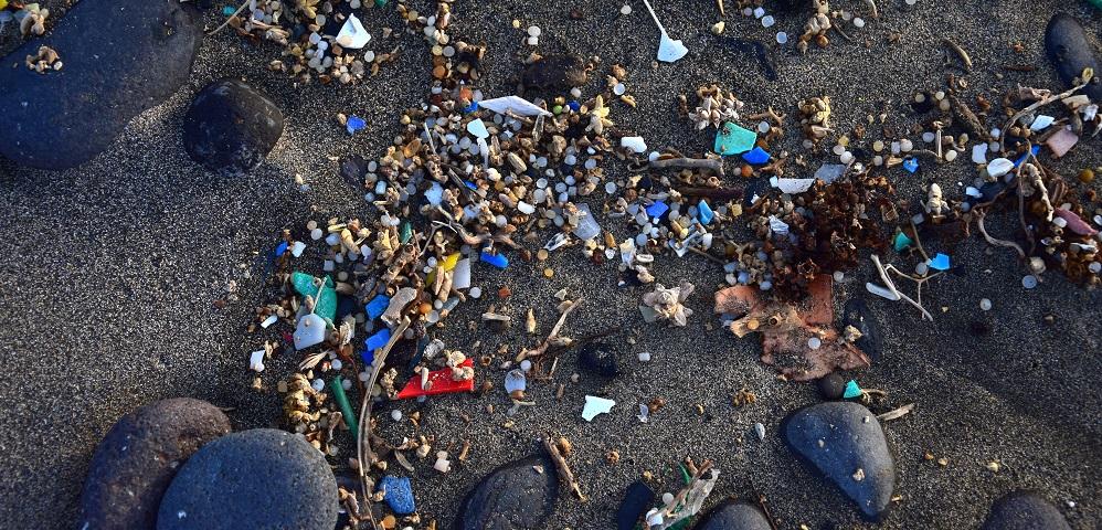 microplastics environment pollution