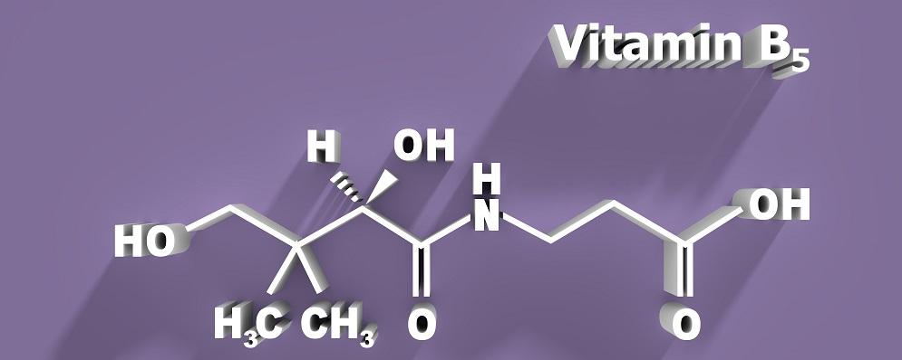 pantothenate molecule vitamin B