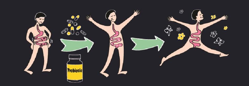 probiotics intestinal health