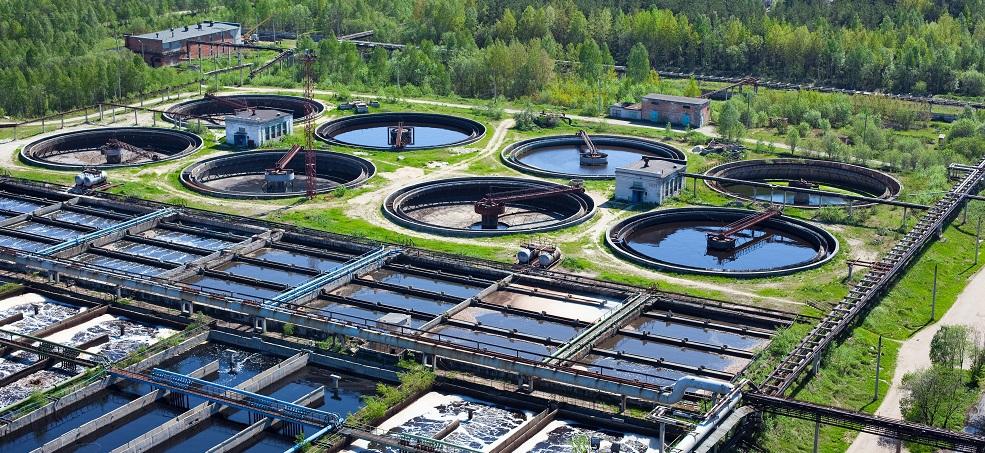 wastewater treatment bioaugmentation bacillus subtilis sewage
