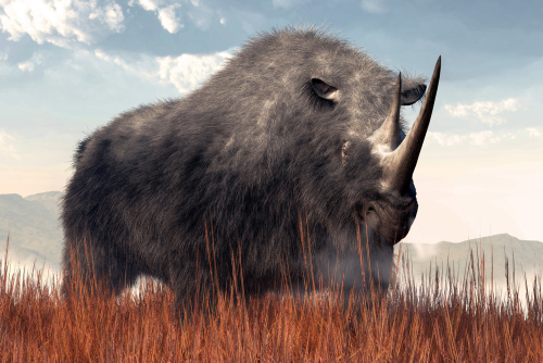 A Woolly rhino rendiring with brown grass and mountainous backdrop