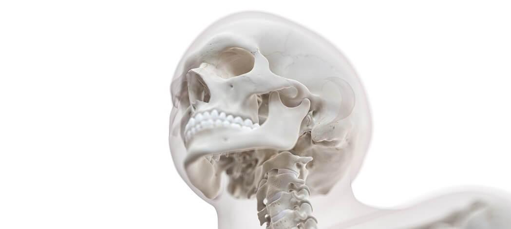 C0 C1 atlas cervical spine skull foramen magnum