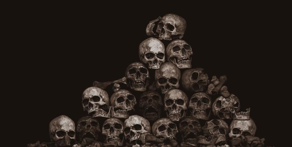 skull skulls