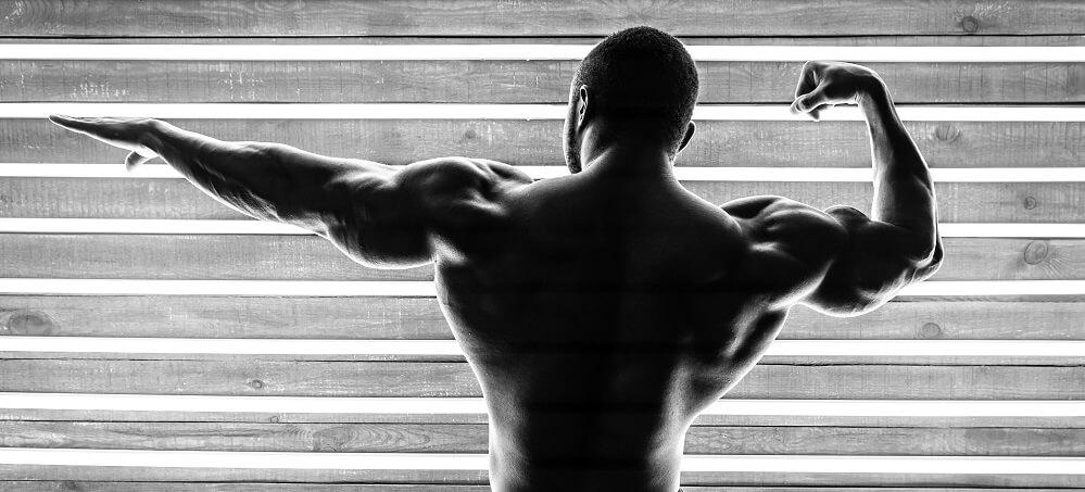 muscle hypertrophy shoulders bodybuilder weightlifter