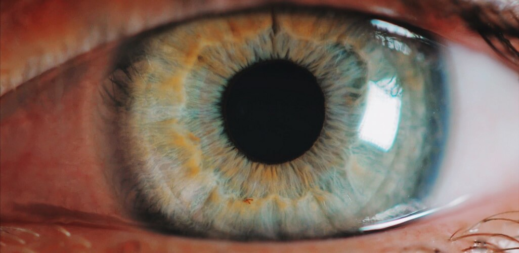 eye pupil iris closeup