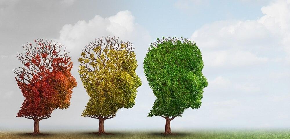 alzheimer ageing aging process neurodegeneration