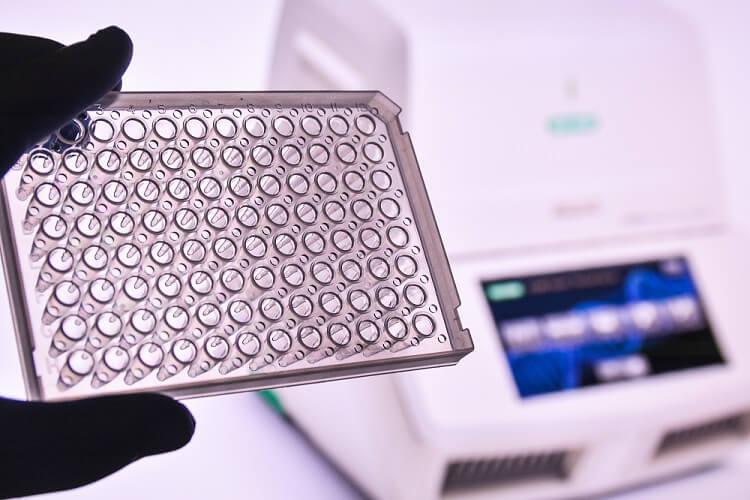 gene expression analysis genetic engineering
