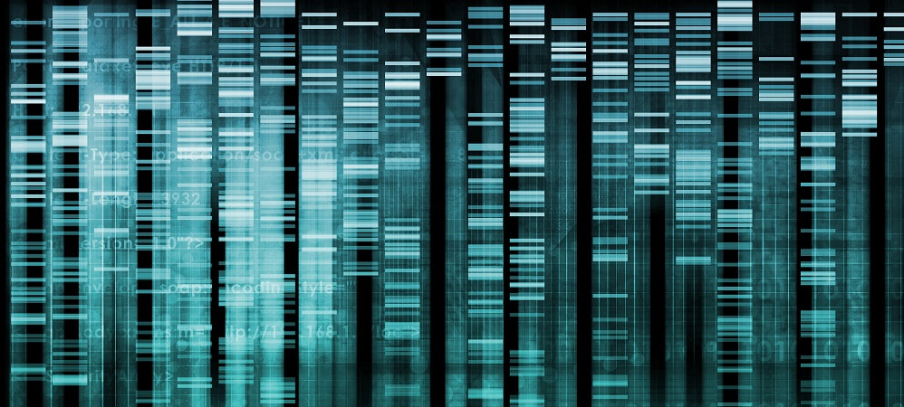 human genome project gene expression