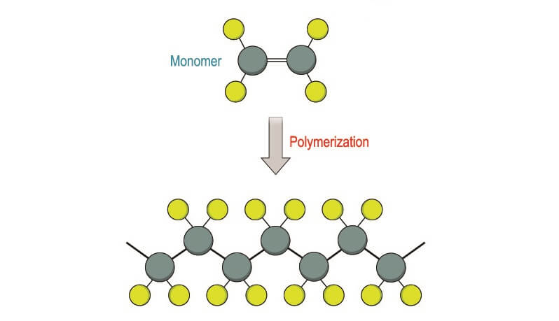 polymerization polymers monomers proteins