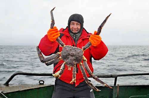 A commercial fisherman holding up an red king crab on the bow of a boat