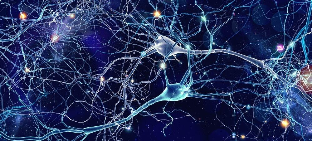 action potentials neurons firing axon soma dendrite neurotransmitters