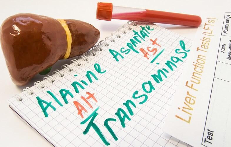 ALT AST alanine transferase aspartate transaminase SGPT glutamic pyruvic