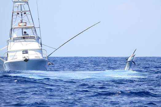 fishing boat and a black marlin leaping out of the water