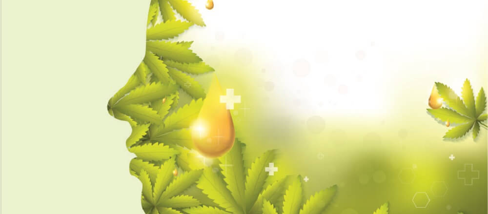cannabidiol oil CBD cannabinoid system endocannabinoid