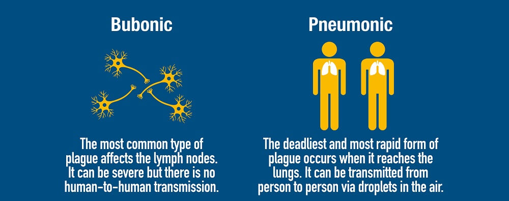 plague types yersinia pestis bubonic pneumonic septicemic
