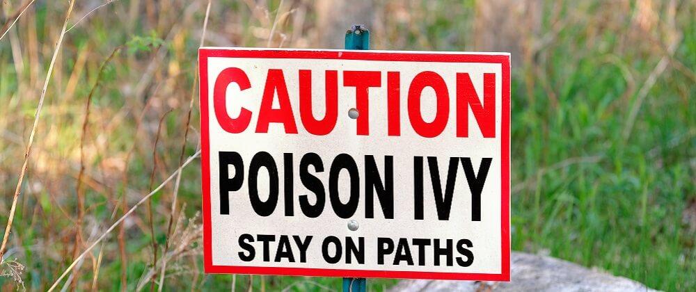 poison ivy hapten rash irritant