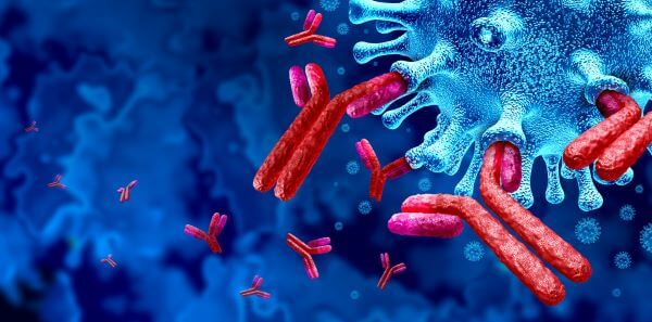 Antigens vs. Antibodies