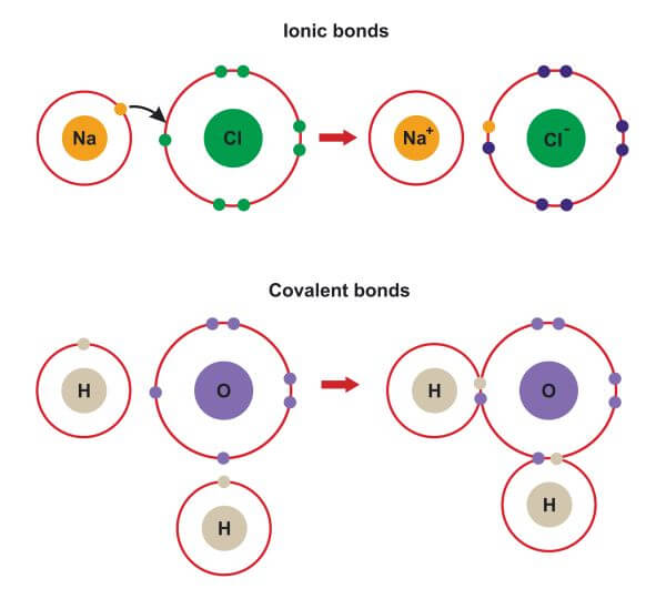 The difference between ionic and covalent bonds