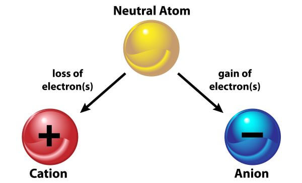Ions are atoms that have lost or gained an electron