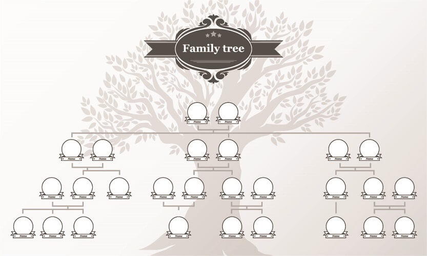 family tree pedigree traits phenotype genotype hereditary
