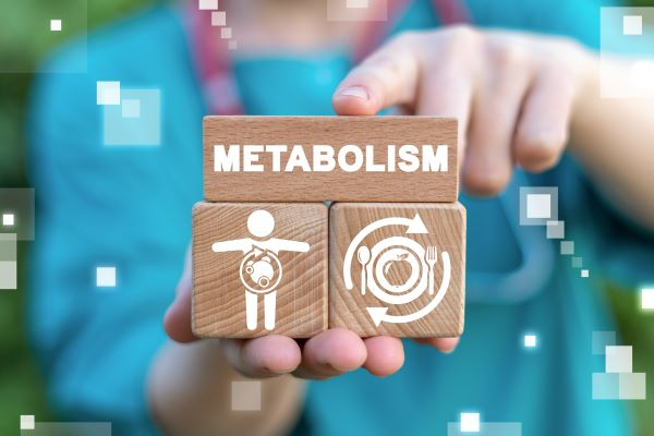 Catabolism is a type of metabolic reaction