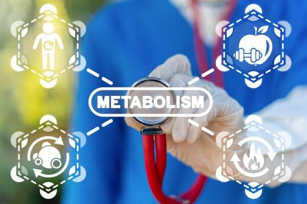 Catabolism and anabolism are both types of metabolic reactions