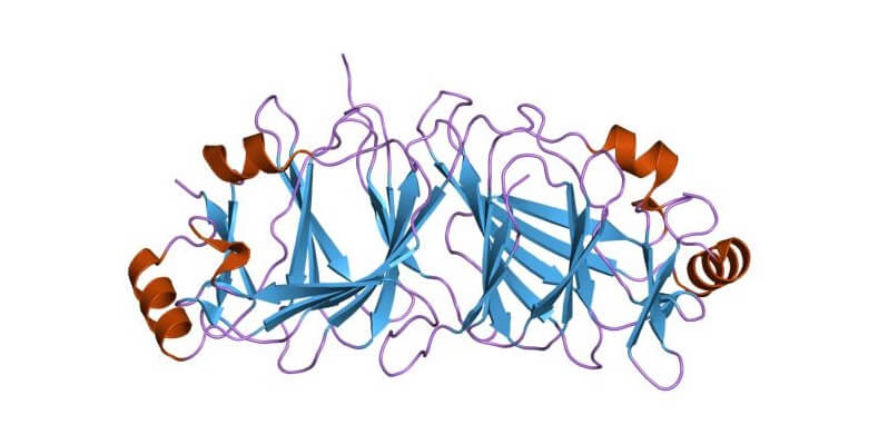 g6p isomerase enzyme glucose 6-phosphate
