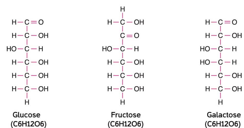 hexose fructose glucose molecule c6h12o6