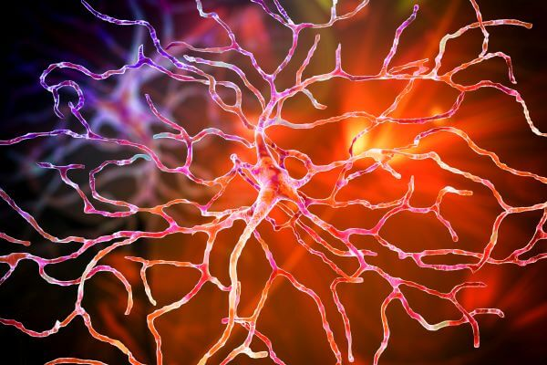 Ganglion cells are located in the ganglion layer of the retina